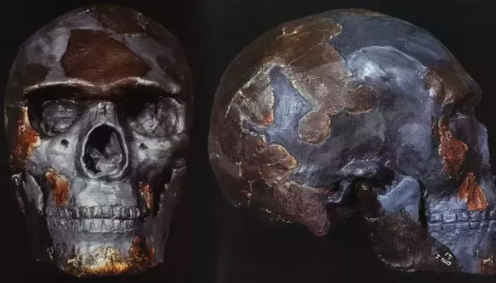 Homo sapiens are found remains of the oldest